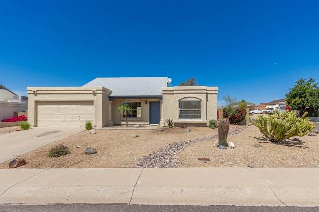 1256 E Topeka Drive, Phoenix, AZ 85024 (MLS #6060451) :: The Property Partners at eXp Realty
