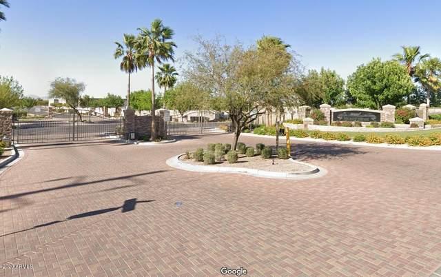 21986 E Diana Way, Queen Creek, AZ 85142 (MLS #6060481) :: Relevate | Phoenix