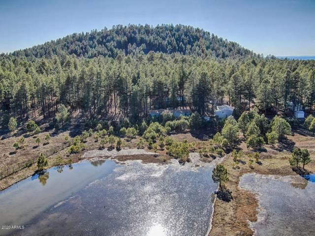 2017 E Sierra Pine Loop, Pinetop, AZ 85935 (MLS #6060483) :: Lux Home Group at  Keller Williams Realty Phoenix
