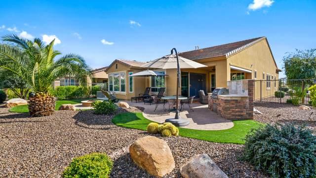 12948 W Crestvale Drive, Peoria, AZ 85383 (MLS #6060490) :: Nate Martinez Team