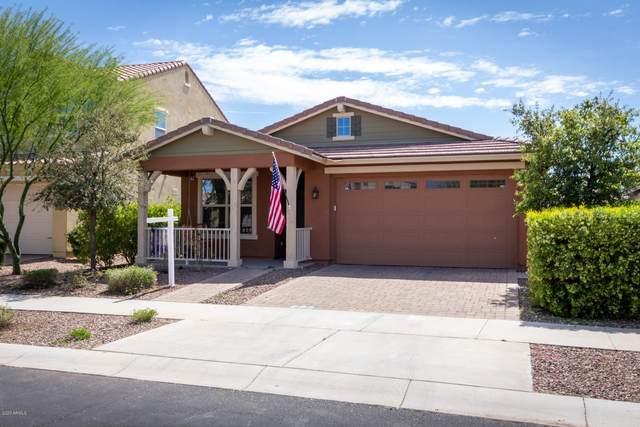 10233 E Talameer Avenue, Mesa, AZ 85212 (MLS #6060524) :: The Property Partners at eXp Realty