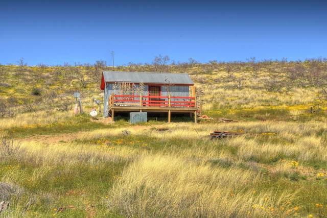 5727 S Butterfield Road, Willcox, AZ 85643 (MLS #6060558) :: Yost Realty Group at RE/MAX Casa Grande