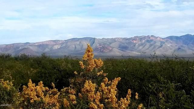 TBD E Canada Drive, Sierra Vista, AZ 85650 (#6060576) :: The Josh Berkley Team