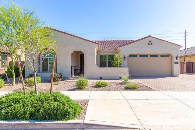 22171 E Estrella Road, Queen Creek, AZ 85142 (MLS #6060578) :: Relevate | Phoenix