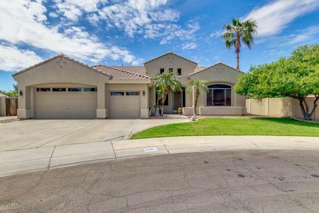 630 N Edith Court, Chandler, AZ 85225 (MLS #6060601) :: Keller Williams Realty Phoenix