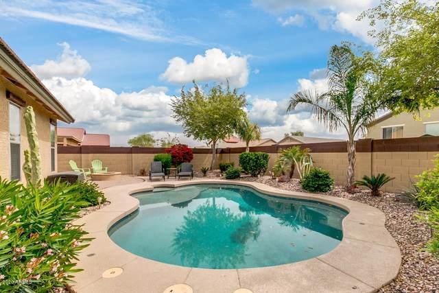 25037 W Vista Norte Street, Buckeye, AZ 85326 (MLS #6060620) :: Lux Home Group at  Keller Williams Realty Phoenix