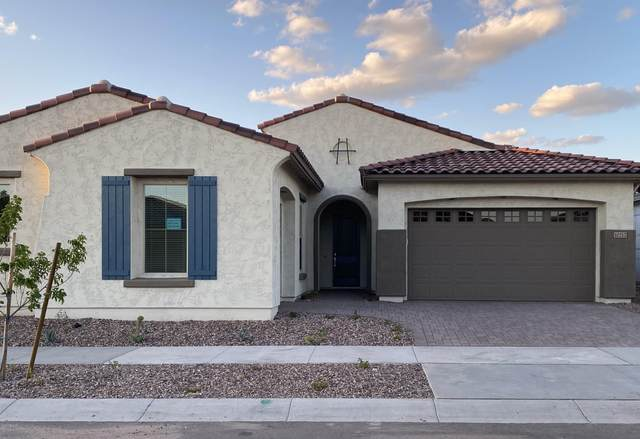 10212 E Tiger Lily Avenue, Mesa, AZ 85212 (MLS #6060629) :: Long Realty West Valley