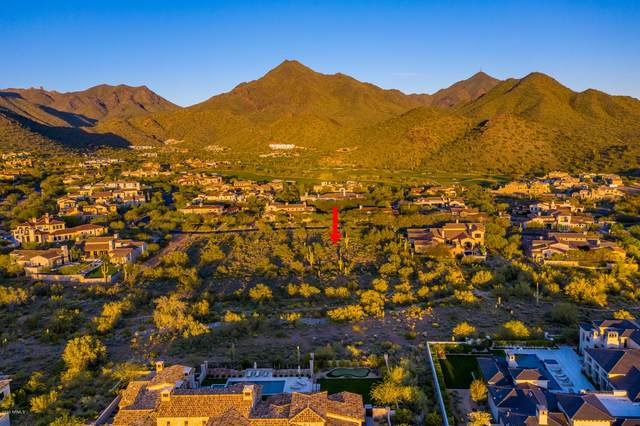 10138 E Hualapai Drive, Scottsdale, AZ 85255 (MLS #6060672) :: Riddle Realty Group - Keller Williams Arizona Realty