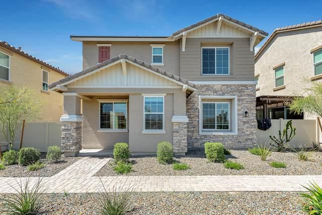 29243 N 122ND Lane N, Peoria, AZ 85383 (MLS #6060675) :: Conway Real Estate