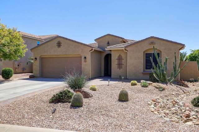 3481 E Yellowstone Place, Chandler, AZ 85249 (MLS #6060689) :: Relevate | Phoenix