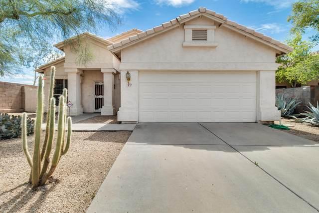 8779 E Mescal Street, Scottsdale, AZ 85260 (MLS #6060692) :: Brett Tanner Home Selling Team