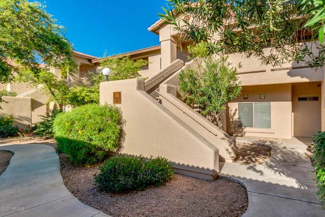 1351 N Pleasant Drive #1095, Chandler, AZ 85225 (MLS #6060694) :: Lifestyle Partners Team