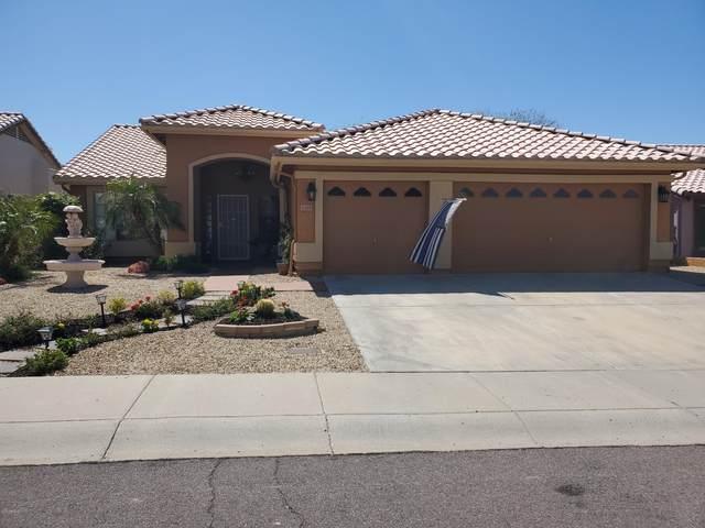 6109 W Park View Lane, Glendale, AZ 85310 (MLS #6060709) :: My Home Group