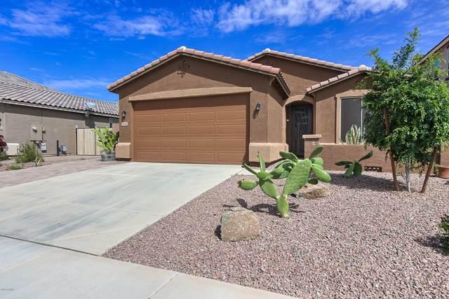 2072 W Kenton Way, Queen Creek, AZ 85142 (MLS #6060730) :: Relevate | Phoenix