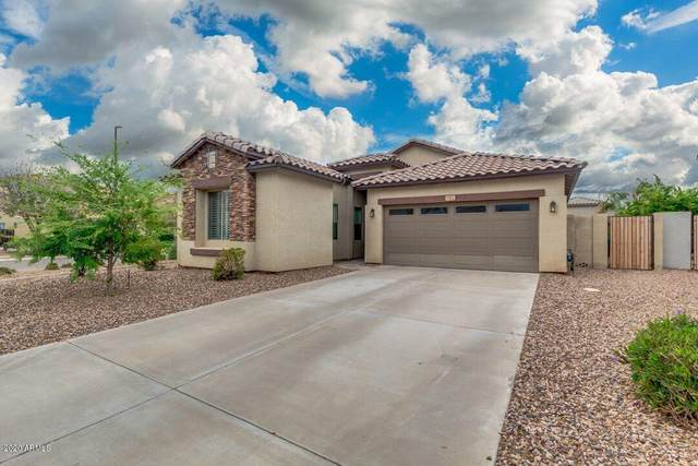 3912 S Stallion Drive, Gilbert, AZ 85297 (MLS #6060746) :: Revelation Real Estate
