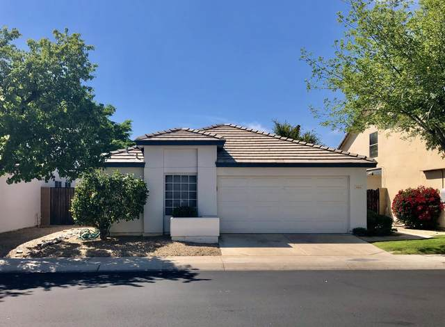 15814 N 4TH Drive, Phoenix, AZ 85023 (MLS #6060748) :: REMAX Professionals