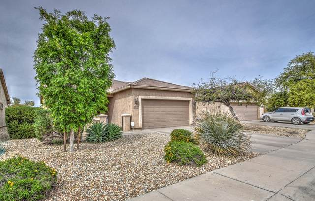 19362 W Woodlands Avenue, Buckeye, AZ 85326 (MLS #6060750) :: The Luna Team