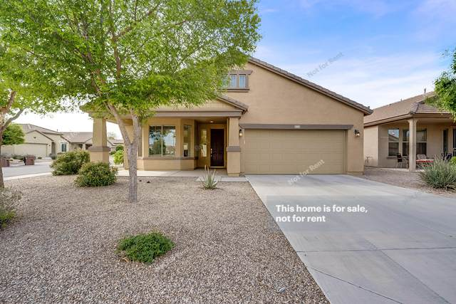 1065 W Desert Hollow Drive, San Tan Valley, AZ 85143 (MLS #6060775) :: Brett Tanner Home Selling Team