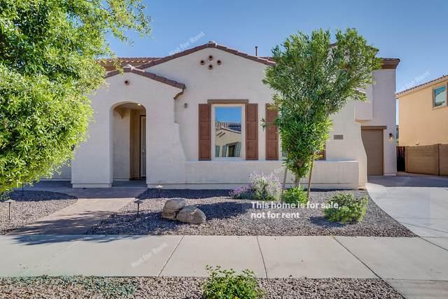 21029 E Sunset Drive, Queen Creek, AZ 85142 (MLS #6060800) :: Relevate | Phoenix