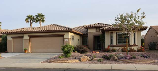 15244 W Springleaf Way, Surprise, AZ 85374 (MLS #6060809) :: Lux Home Group at  Keller Williams Realty Phoenix