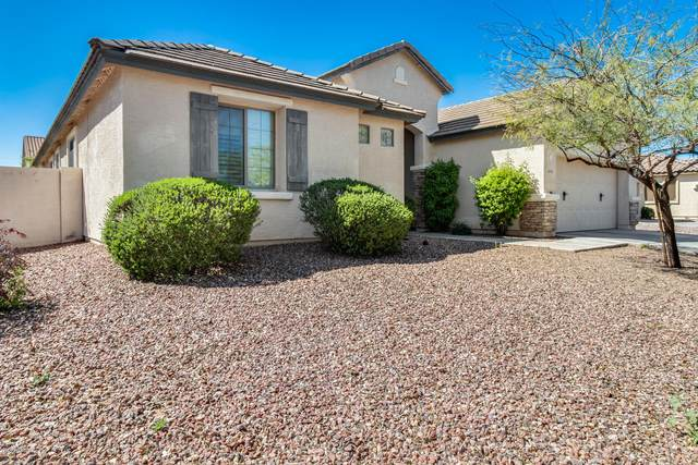 14227 W Charter Oak Road, Surprise, AZ 85379 (MLS #6060817) :: Conway Real Estate