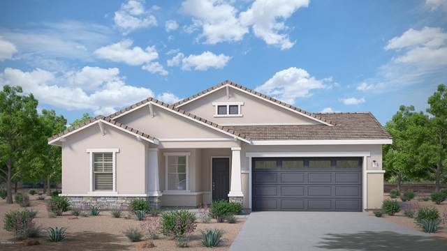 21022 E Via Del Sol, Queen Creek, AZ 85142 (MLS #6060837) :: Revelation Real Estate