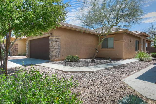 1651 W Morse Drive, Anthem, AZ 85086 (MLS #6060840) :: My Home Group