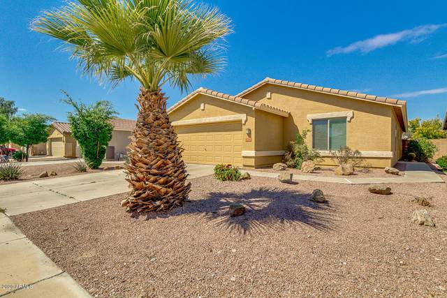 126 W Angus Road, San Tan Valley, AZ 85143 (MLS #6060842) :: Brett Tanner Home Selling Team