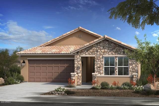 704 E Buckingham Avenue, Gilbert, AZ 85297 (MLS #6060843) :: Relevate | Phoenix