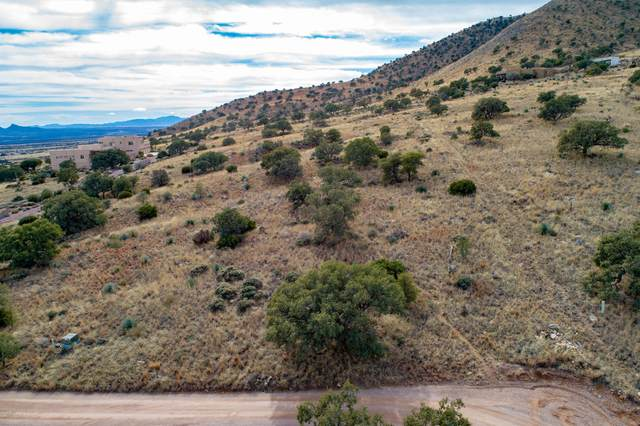 TBD E Indigo Sky Road, Hereford, AZ 85615 (MLS #6060859) :: The Newman Team