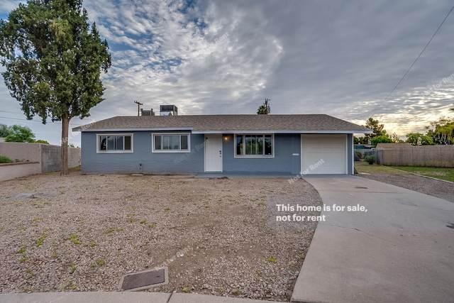 2240 E Arbor Circle, Mesa, AZ 85204 (MLS #6060864) :: Yost Realty Group at RE/MAX Casa Grande