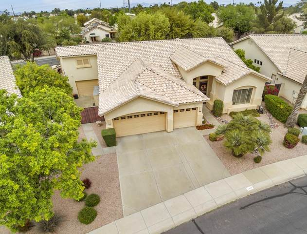 1866 E Dava Drive, Tempe, AZ 85284 (MLS #6060885) :: The Kenny Klaus Team