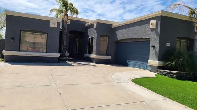 1847 E Carob Drive, Chandler, AZ 85286 (MLS #6060889) :: Arizona Home Group