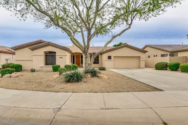 14573 W Edgemont Avenue, Goodyear, AZ 85395 (MLS #6060901) :: The Garcia Group