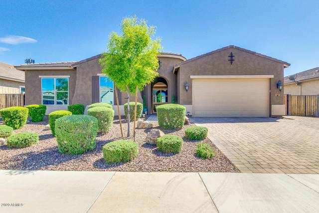 3929 E Peartree Lane, Gilbert, AZ 85298 (MLS #6060936) :: Revelation Real Estate