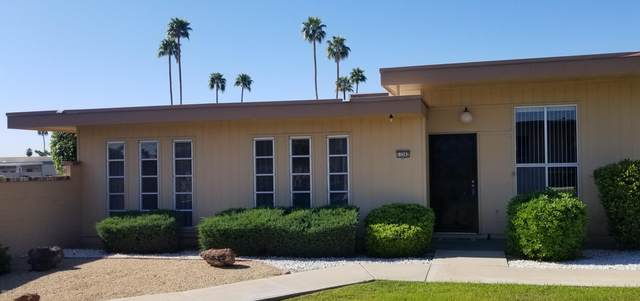 13202 N 99TH Drive, Sun City, AZ 85351 (MLS #6060949) :: Nate Martinez Team