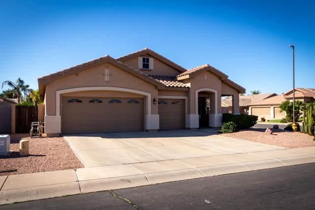 3831 E Pinon Court, Gilbert, AZ 85234 (MLS #6060950) :: Relevate | Phoenix