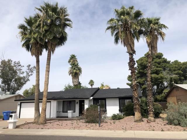 3302 E Helena Drive, Phoenix, AZ 85032 (MLS #6060957) :: The AZ Performance PLUS+ Team