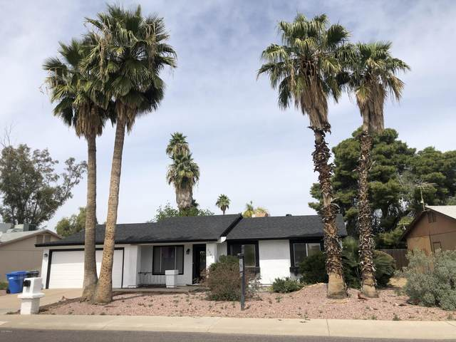 3302 E Helena Drive, Phoenix, AZ 85032 (MLS #6060957) :: Relevate | Phoenix