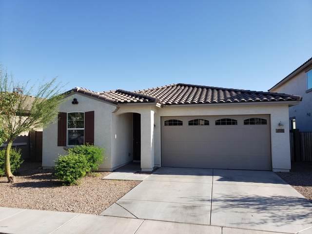 10435 W Yuma Street, Tolleson, AZ 85353 (MLS #6060993) :: Revelation Real Estate