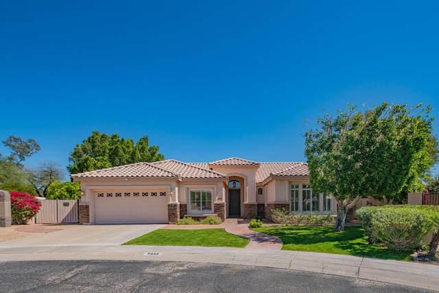 7233 W Via Montoya Drive, Glendale, AZ 85310 (MLS #6061000) :: RE/MAX Desert Showcase