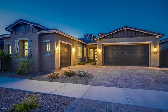 1426 E Milada Drive, Phoenix, AZ 85042 (MLS #6061003) :: REMAX Professionals
