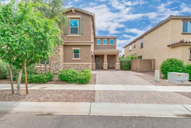 3007 E Shannon Street, Gilbert, AZ 85295 (MLS #6061019) :: Brett Tanner Home Selling Team