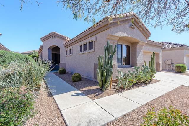 5254 E Estevan Road, Phoenix, AZ 85054 (MLS #6061023) :: Brett Tanner Home Selling Team