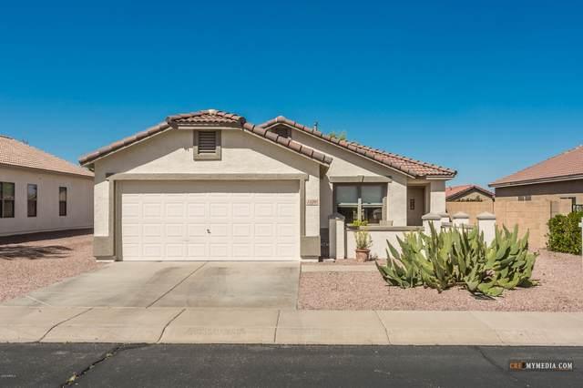1126 E Milada Drive, Phoenix, AZ 85042 (MLS #6061033) :: REMAX Professionals