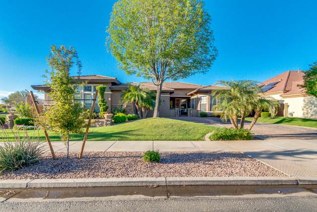 18546 E Old Beau Trail, Queen Creek, AZ 85142 (MLS #6061040) :: Revelation Real Estate