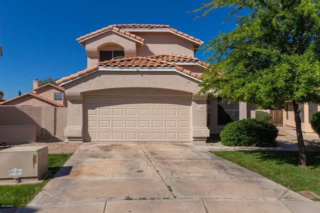 12010 N 79TH Lane, Peoria, AZ 85345 (MLS #6061047) :: Nate Martinez Team