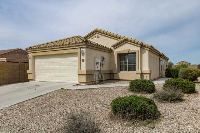 23968 N Nectar Avenue, Florence, AZ 85132 (MLS #6061083) :: BIG Helper Realty Group at EXP Realty