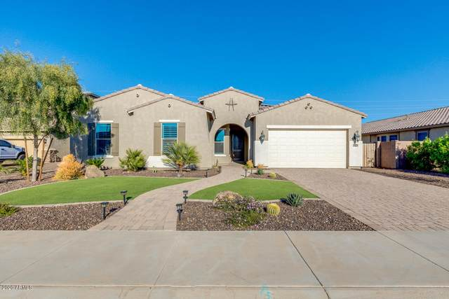 5079 S Joshua Tree Lane, Gilbert, AZ 85298 (MLS #6061117) :: Revelation Real Estate