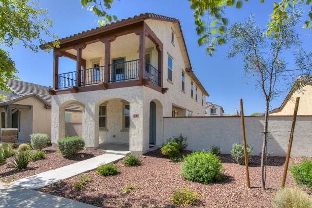 2382 N Delaney Drive, Buckeye, AZ 85396 (MLS #6061127) :: Conway Real Estate